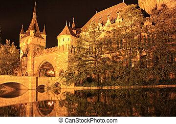 Budapest by night , Vajdahunyad Castle