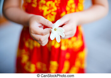 Tiare flower - Close up of little girl holding tahitian...