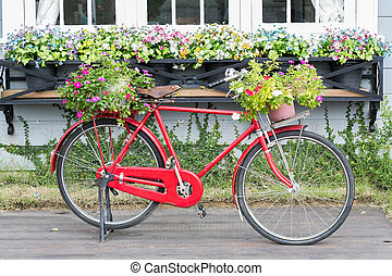 red bicycle white flower