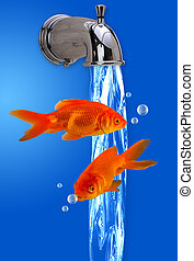 Faucet full of fish. - Fish coming out of the water flow.
