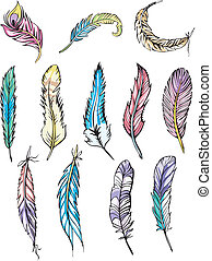 Motley feathers - Miscellaneous motley feathers. Set of...