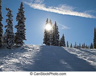 Colorado Ski Slope - A view looking uphill at a ski slope at...