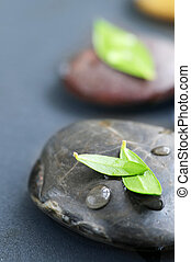 Zen stones submerged in water with green leaves