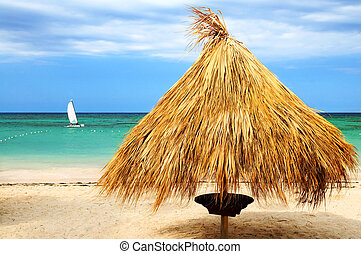 Tropical beach of a Caribbean island with palm branches...