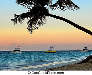 Tropical beach at sunset - Palm tree and fishing boats at...