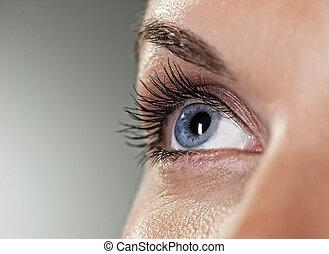 Blue eye on grey background (shallow DoF)