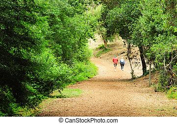 older woman walking dog on trail - older woman walking dog...