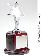star award - silver star award