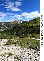 high Gardena valley - vertical composition - summer...
