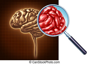 Brain Close Up - Brain close up with a focus on the...