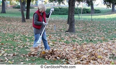 Autumn scene - Mid adult woman raking leaves in a garden