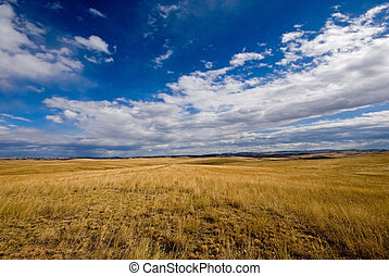 Big Sky - A panoramic view of the big sky and flat prairie...