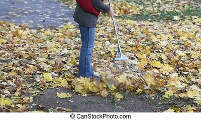 Autumn scene - Woman raking autumn leaves in a garden