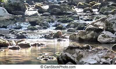 stream with stones nature scene