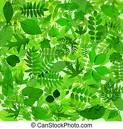 Abstract green leaves background - Beautiful abstract green...