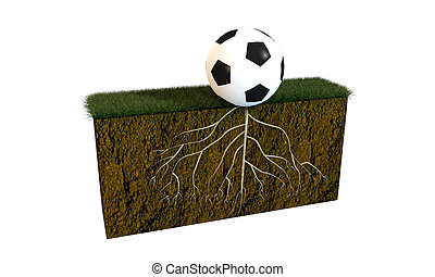 soccer ball with big roots on a soccer field section