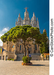 Tree del Sagrado Corazn de Jesus - View on tree with the...