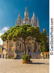 Tree del Sagrado Corazn de Jesus - View on tree with the...