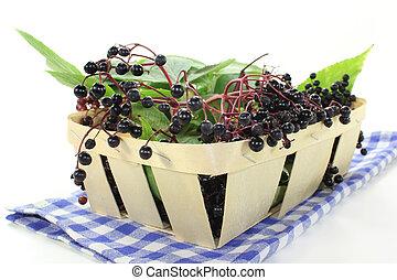Elderberry - fresh elderberries and leaves in a basket