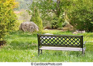 Lonely bench standing in a park