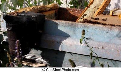 Real apiary - Hives, smoker, smoke, tools - here it is an...
