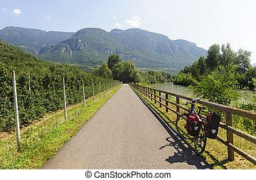 Cycle lane of the Adige valley near Bolzano (Trentino Alto...