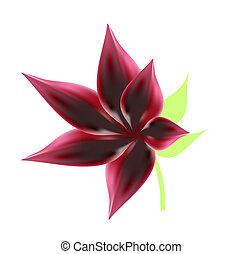 vector red flower illustration mesh