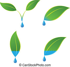 Green eco plant and water concepts - A vector concept...