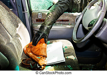 ladrón, estola, bolsa, coche