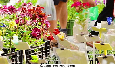 Flower market - Colorful flower market in the city with...