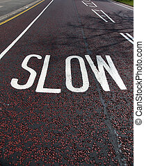 "Slow - Text ""slow"" in whitepainted on asphalt road"