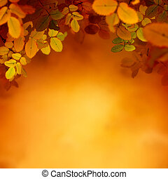 Autumn design background with colorful red and yellow leaves...