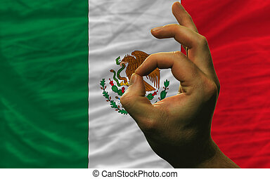 ok gesture in front of mexico national flag - man showing...