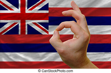 ok gesture in front of hawaii us state flag