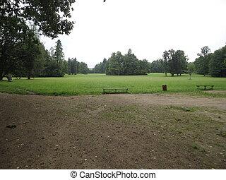 Poland Bialowieza park