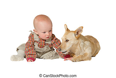 Jack russel terrier and baby
