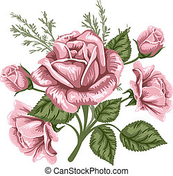 Vintage bouquet of pink roses. Vector image.