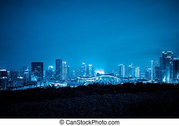 skyline of shenzhen china at night.