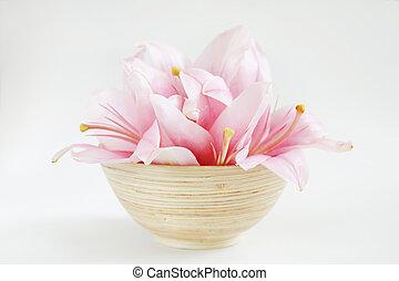 Harmony - concept of harmony, balance, meditation