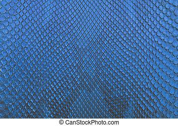 blu, pitone, serpente, pelle, struttura