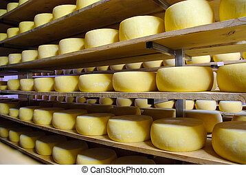 Cheese in storage, Sao Jorge, Azores