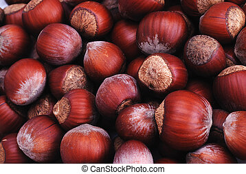 hazelnut in shell, vegetable eating food