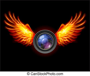 Focus-Fiery wings