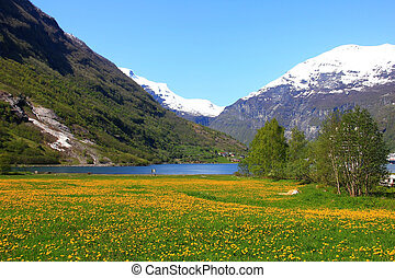 View to the Geirangerfjord - Nice View to the Geirangerfjord...