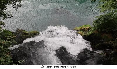 Creek - River Vrelo, Perucac, National Park Tara in Serbia...