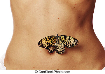 Butterflies in the stomach close up