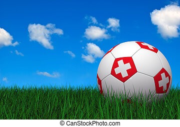 Swiss soccer ball laying on the grass
