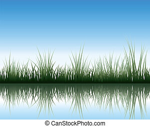 meadow with reflection - Vector grass silhouettes background...
