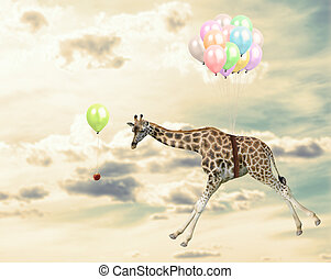 Animal Running Behind An Opportunity - Giraffe Running...