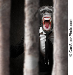Annoyed Monkey Behind Bars